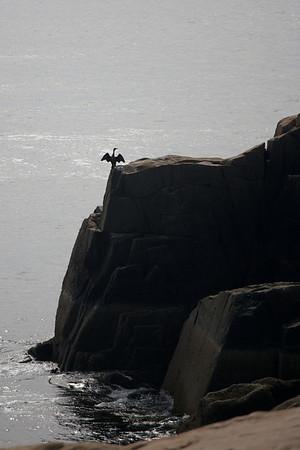 Acadia Climbing 9-18-11