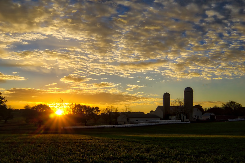 1092 - Autumn 2016 - Sunrise Beilers (p).jpg
