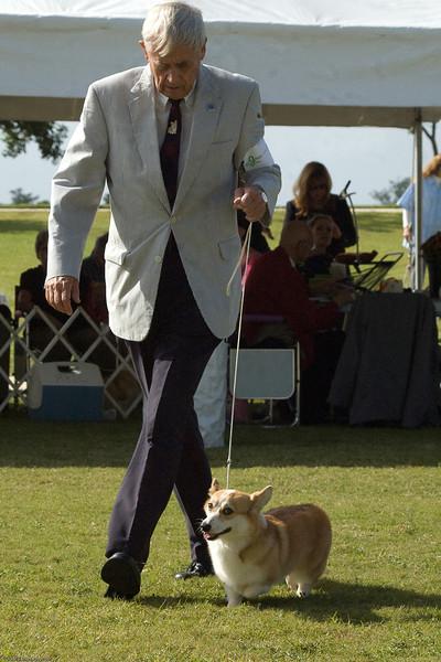 Boca Raton Dog Show-104.jpg
