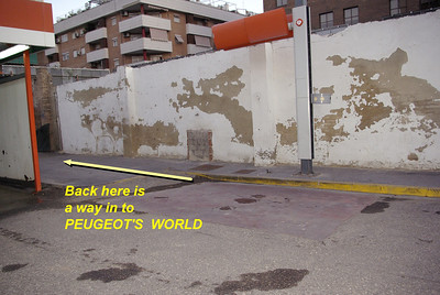 Peugeot high wall kitten oct. 6