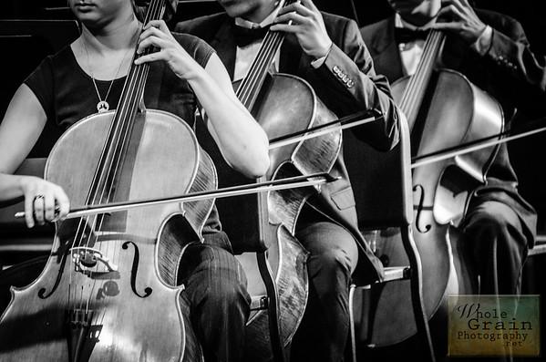 2014-15 SHS Orchestra Candids