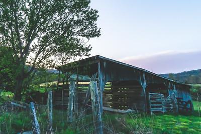 Tennessee Roadtrip Pics