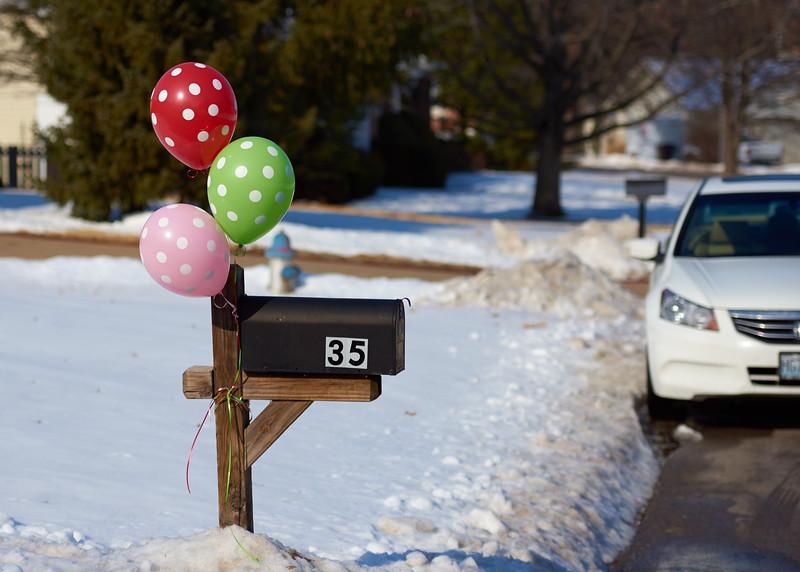 Callie's First Birthday.jpg