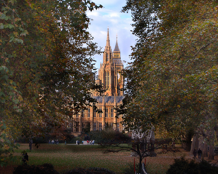 Spires and Trees