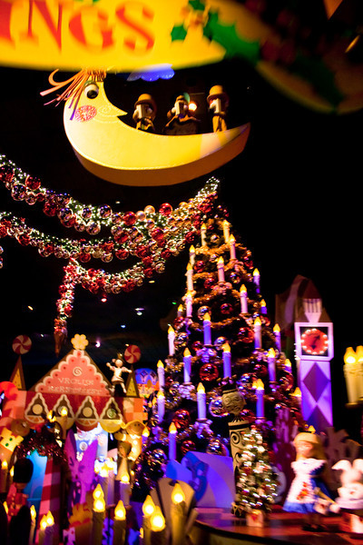 2010 - Jan - 18-24 - Family Disneyland Trip-7739