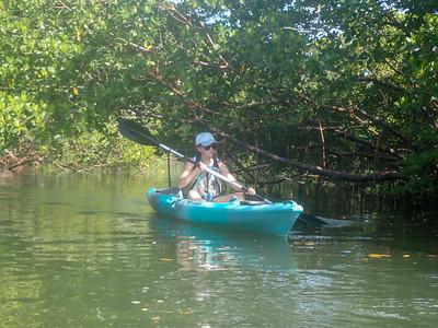 9AM Mangrove Tunnel Kayak Tour - Audrey