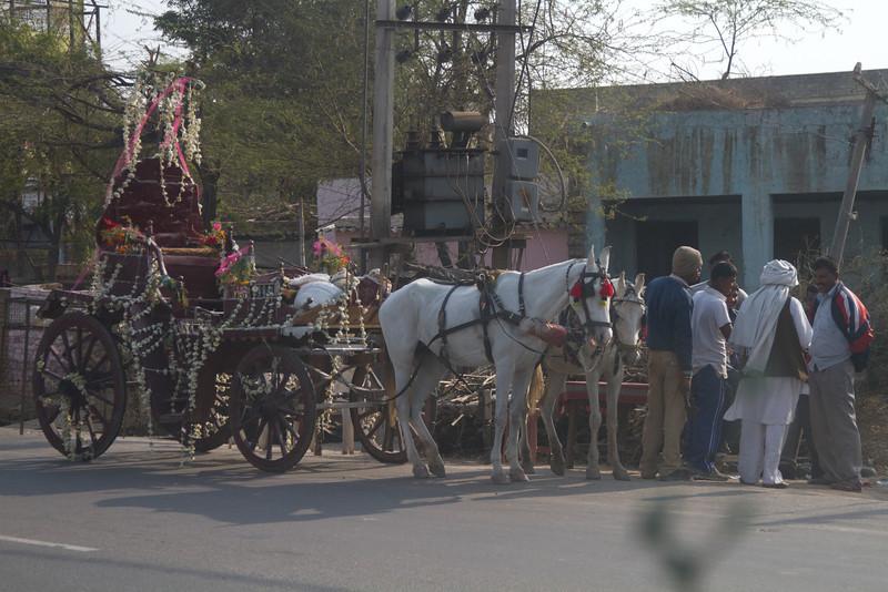 India_2012Feb-5543.jpg