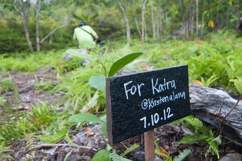 Borneo-Jungle-6774.jpg