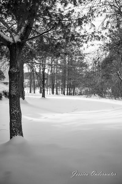 VA_Snow_ART_JOP-0012.jpg