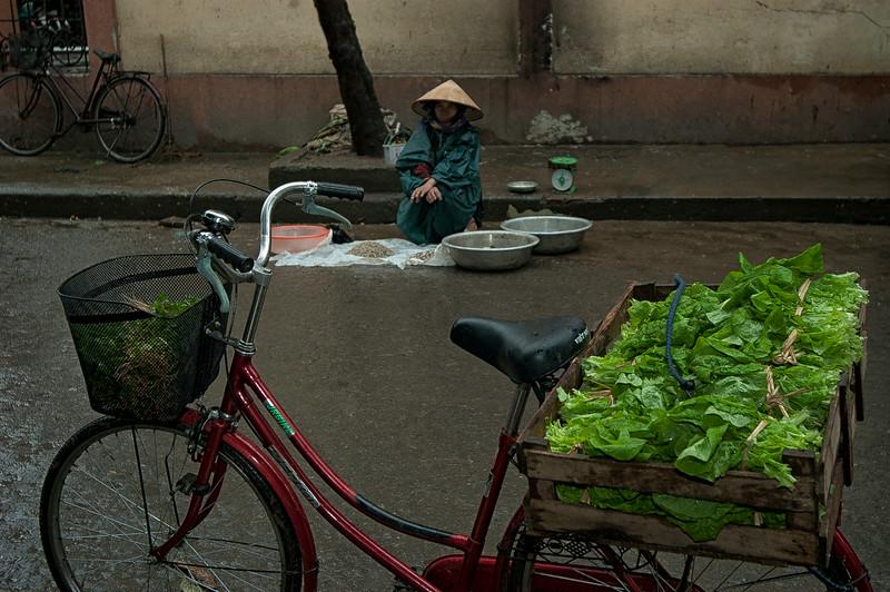 Early morning at the market.  Ninh Binh, Vietnam, 2008