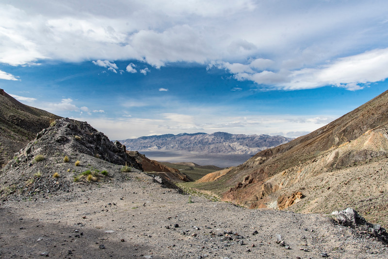 west-exit-Death-Valley-April-spring-2017flowersjpg.jpg