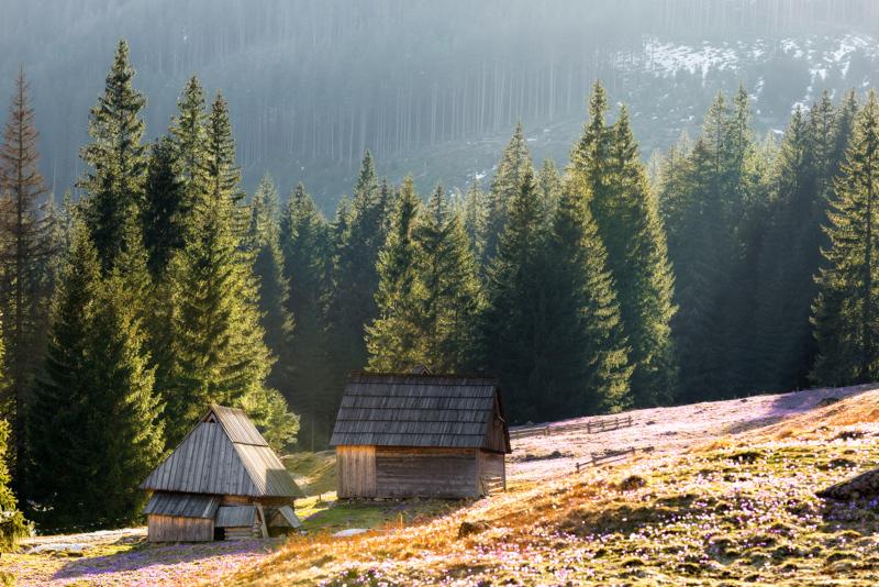 tatra-national-park.jpg