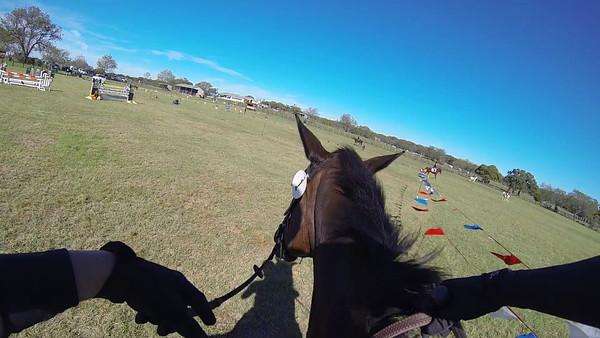 Quail Run Farm Horse Show