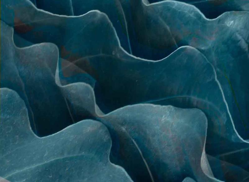 2019 blue waves needs work.jpg