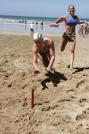Beach Flags - Ang 051211