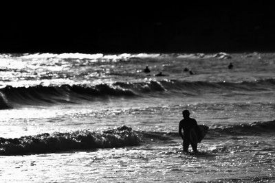 Silver Surfer - Lyall bay