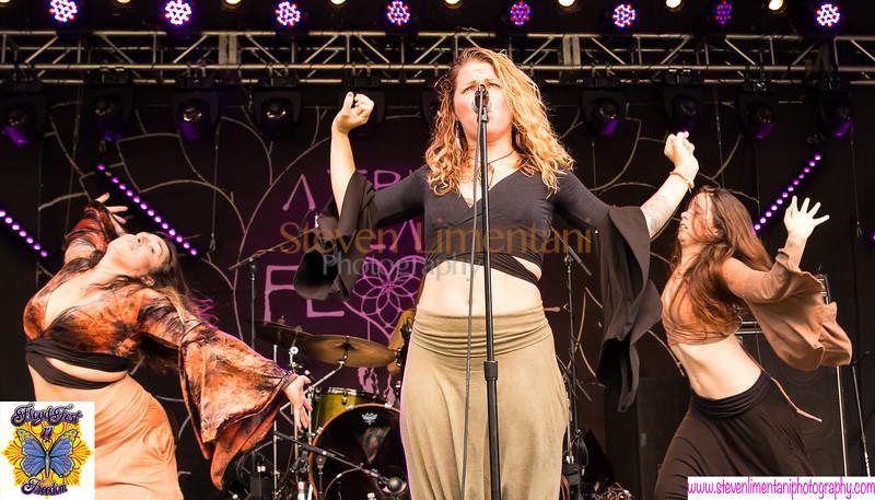 Floyd, VA - July 28, 2017, Floyd Fest.