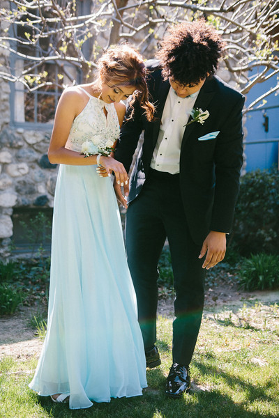 4-8-17 Prom Photos (Jessica's Goddaugter Prom Photos)-9187.jpg