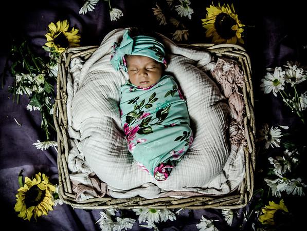 Layla Newborn Photos