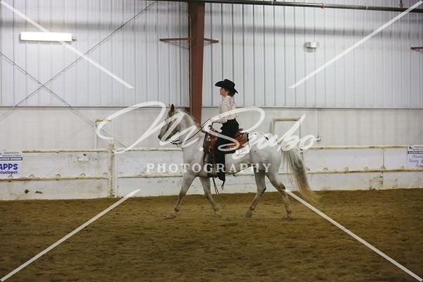 Ranch Horse Pleasure