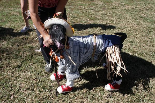 2016 Puppy Picnic