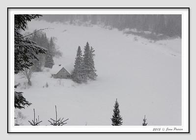 2015-02-04 Raquette L'Éperon parc de la Jacques Cartier (Jean Poirier)