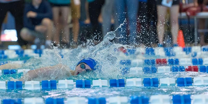 2018_KSMetz_Feb17_SHS Swimming_ State Finals_NIKON D5_5386.jpg