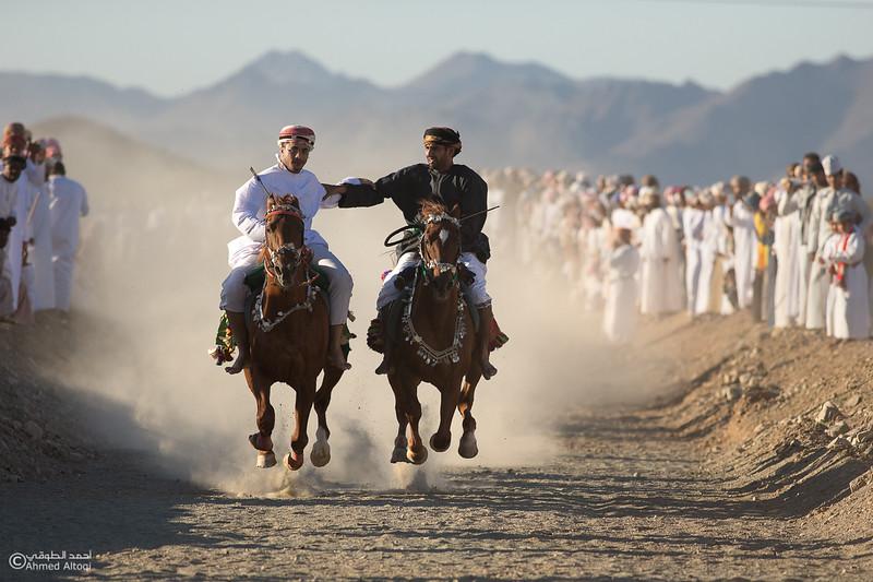IMGL8242- Camel Race.jpg