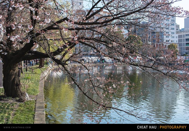 Japan_Tokyo_Apr_2016-118.jpg