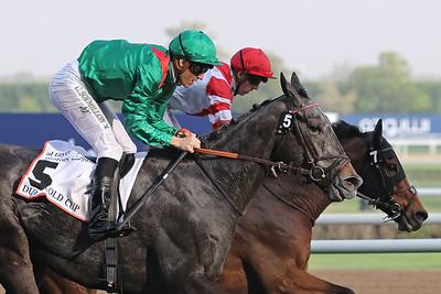 3 Dubai Gold Cup Gr2 3200m