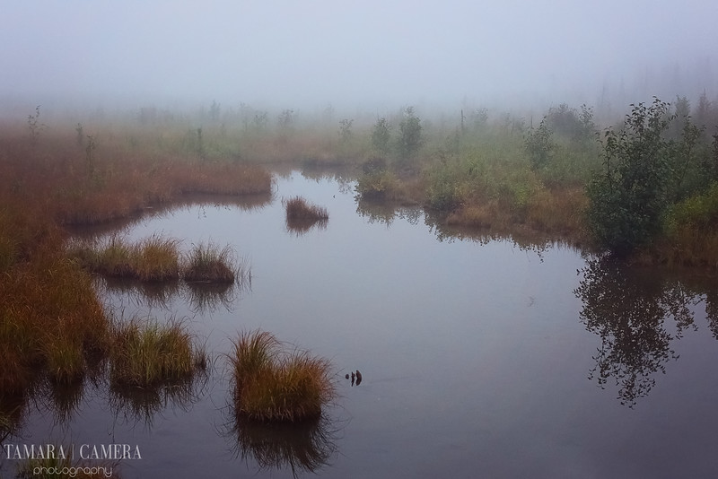Eagle River4-4-2.jpg