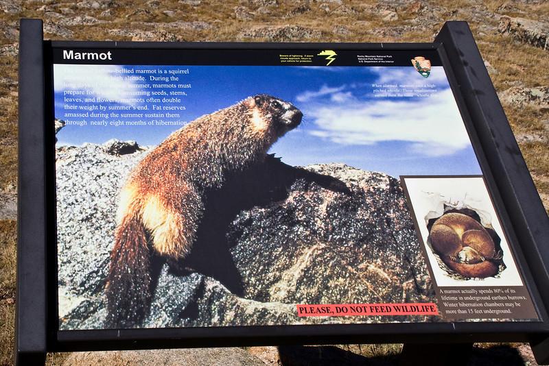 Marmot SIgn.jpg