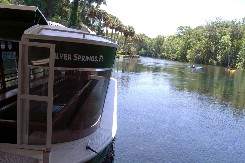 2014 Silver Springs, Florida (9).JPG