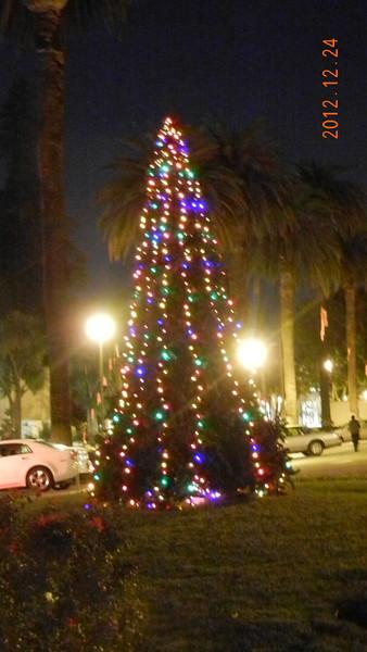 Christmas Vigil Mass 2012/12/24