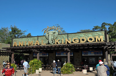 2010 Animal Kingdom