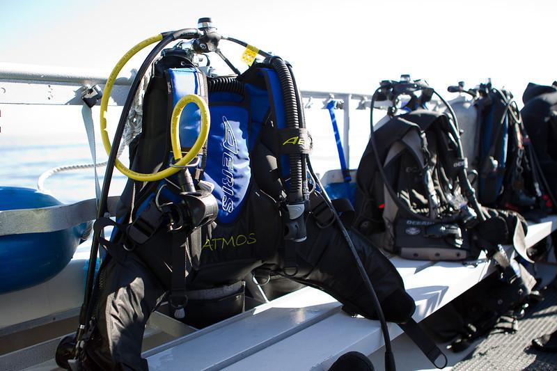 01-05-12_Monterey_Boat_Dive_Roeder_47.jpg