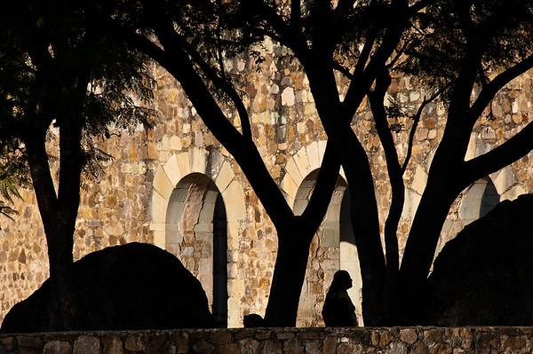 2011 Oaxaca Ruins