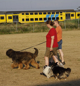 Puppy-examen Joop 28 juli 2006