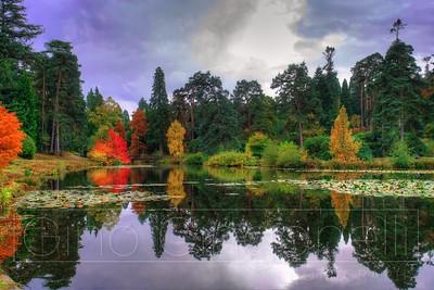 Autumn Colours 2020