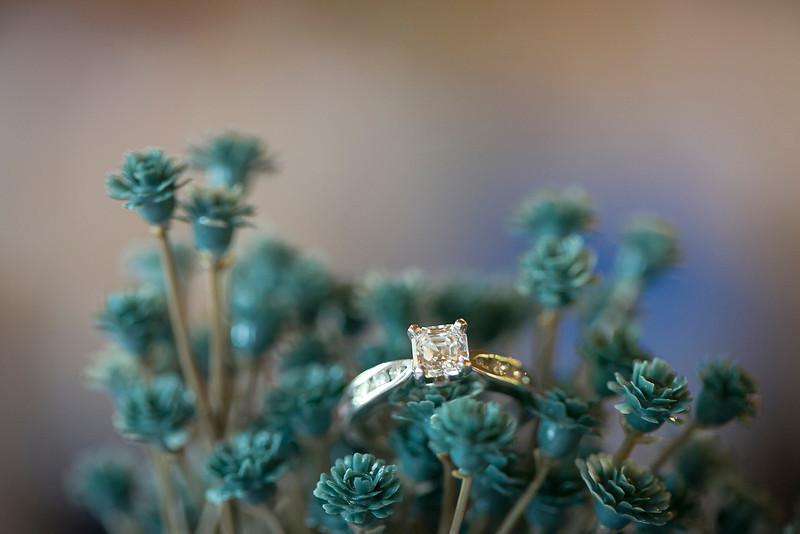 Wedding_-1058.jpg