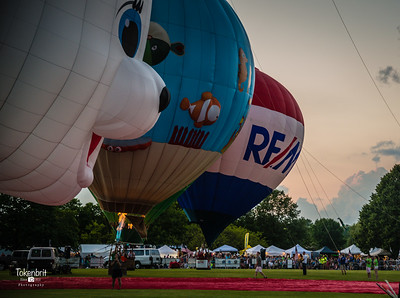 Balloons Eyes to Skies Lisle '17