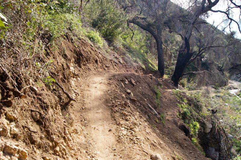 201201291625-El Prieto Trailwork.jpg