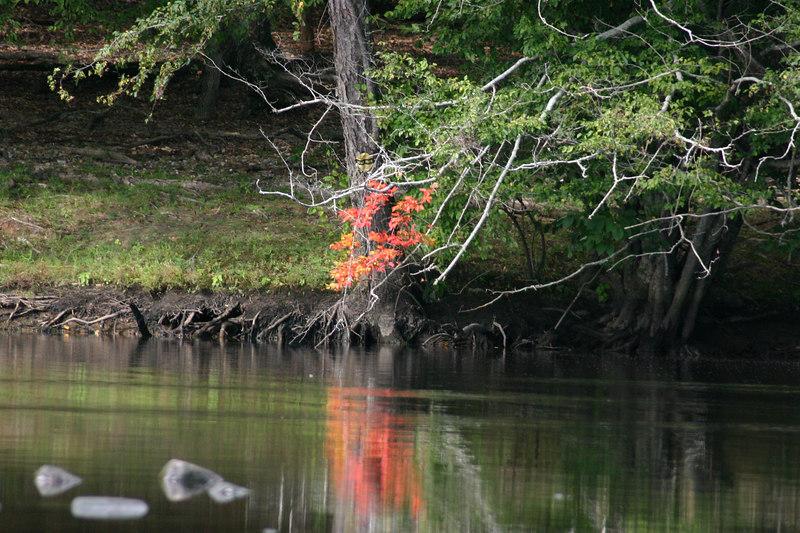 paddling upper tillery aug 2005 062.jpg