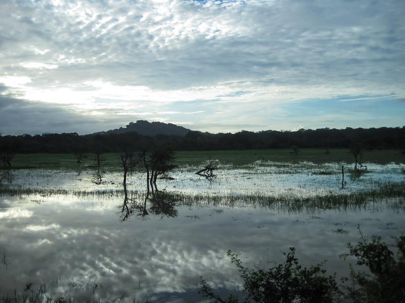 Sri_Lanka17-9792.jpg
