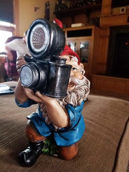 Camera Gnome.jpg