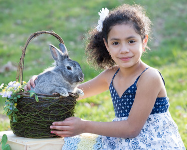 Bunny 2017