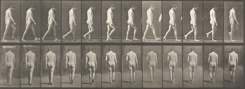 Nude man with locomotor ataxia walking (Animal Locomotion, 1887, plate 549)
