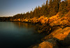 The Golden Hour at Otter Cove