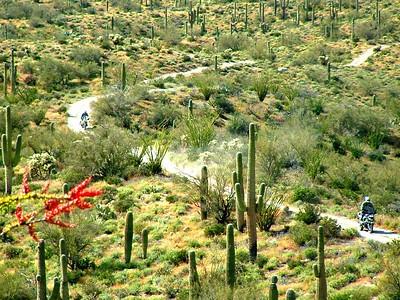 Desert  ride 4-03-05