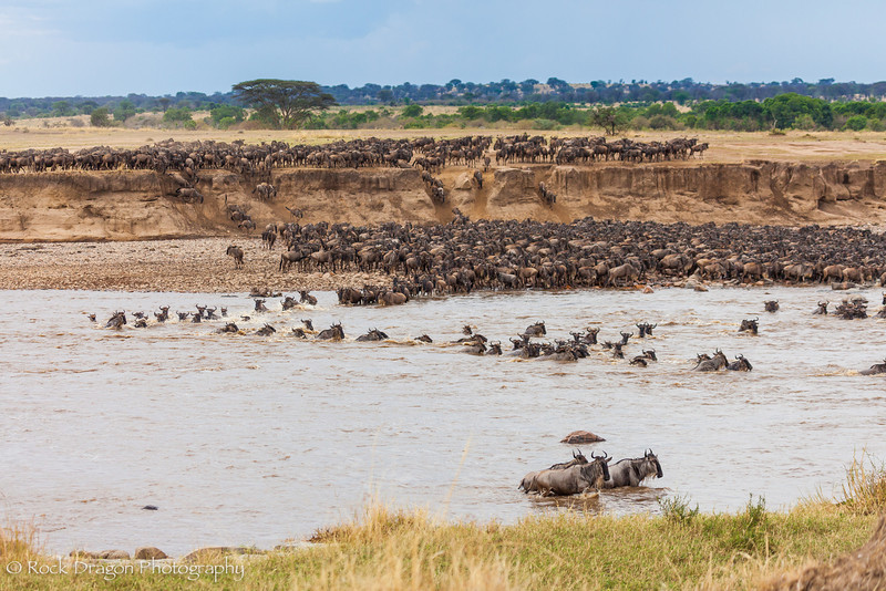North_Serengeti-61.jpg